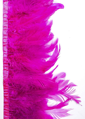 Coque feathers fringe